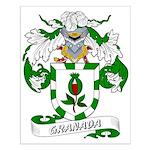 Granada Family Crest Small Poster