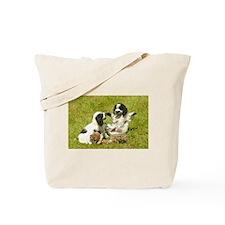 Cute Cocker Spaniels Tote Bag