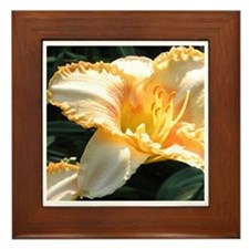 Jewel box Framed Tile