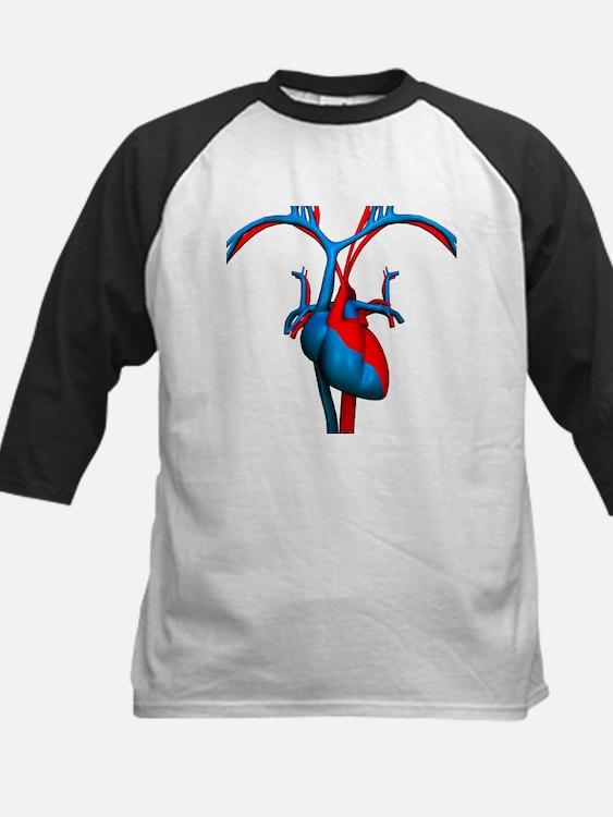 Heart and blood vessels, artwork - Baseball Jersey