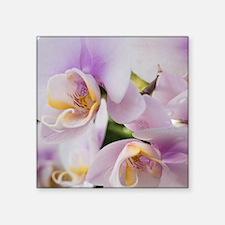 "Unique Phalaenopsis orchid Square Sticker 3"" x 3"""