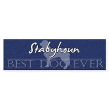 Best Dog Ever Stabyhoun Bumper Bumper Sticker