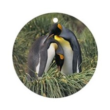 King Penguin Lovers Ornament (Round)