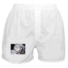 White Bengal Tiger Boxer Shorts