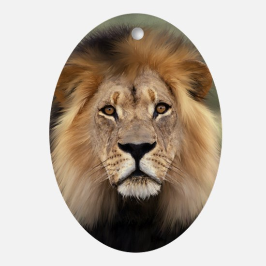 Lion Photograph Keepsake Oval Ornament