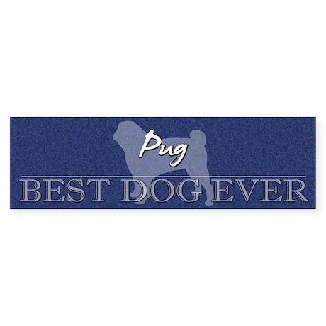 Best Dog Ever Pug Bumper Sticker