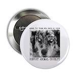 Report Animal Cruelty Dog 2.25