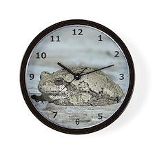 Gray Treefrog Wall Clock