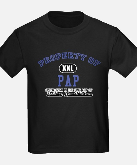Property of Pap T