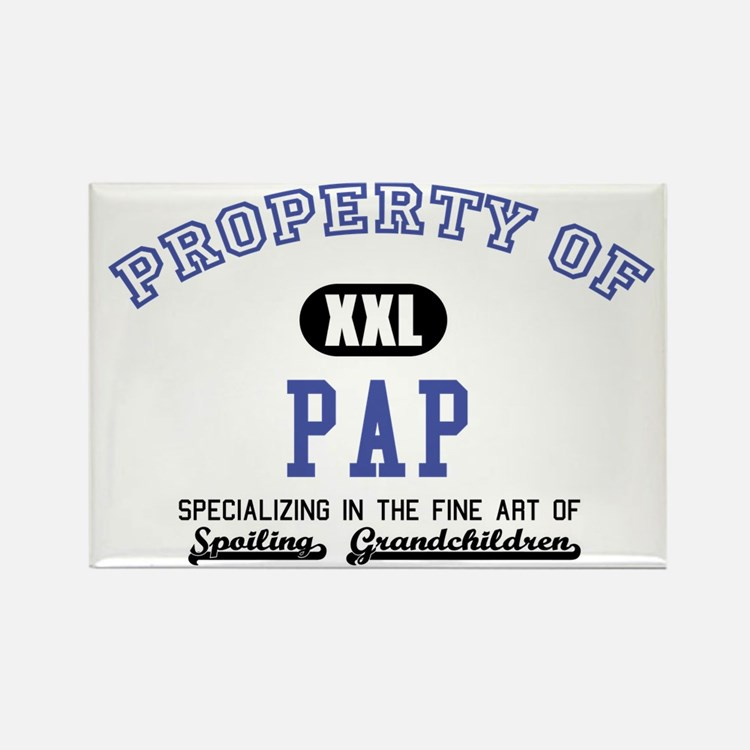 Property of Pap Rectangle Magnet