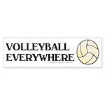 TOP Volleyball Everywhere Bumper Sticker (10 pk)