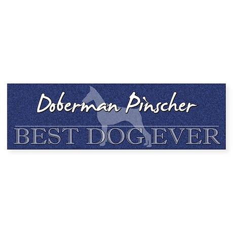 Best Dog Ever Doberman Pinscher Bumper Sticker