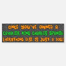 Just a Dog Cavalier King Charles Bumper Bumper Bumper Sticker