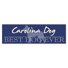 Best Dog Ever Carolina Dog Bumper Bumper Sticker