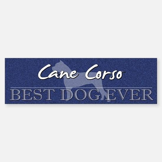 Best Dog Ever Cane Corso Bumper Bumper Bumper Sticker