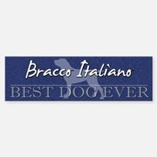Best Dog Ever Bracco Italiano Bumper Bumper Bumper Sticker