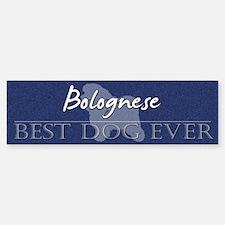 Best Dog Ever Bolognese Bumper Bumper Bumper Sticker