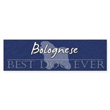 Best Dog Ever Bolognese Bumper Bumper Sticker