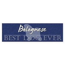 Best Dog Ever Bolognese Bumper Car Sticker