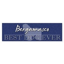 Best Dog Ever Bergamasco Bumper Bumper Sticker