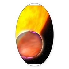 Space 13 Oval Decal