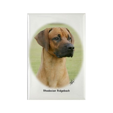 Rhodesian Ridgeback 9Y198D-320 Rectangle Magnet (1