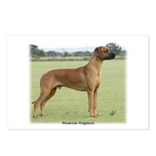 Rhodesian Ridgeback 9Y198D-312 Postcards (Package