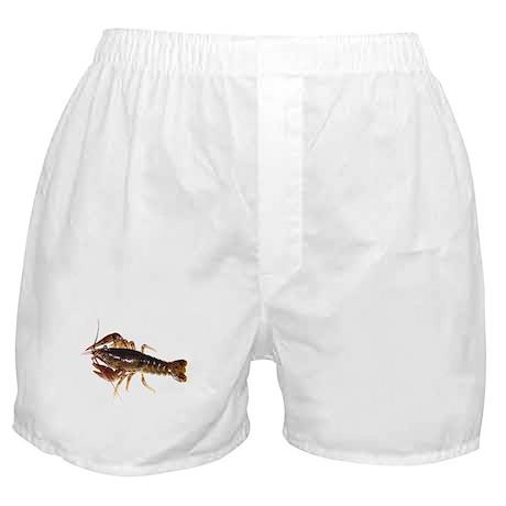 Crayfish Boxer Shorts