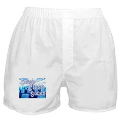 Coach Class Sucks Boxer Shorts