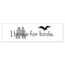 Birding Bumper Car Sticker