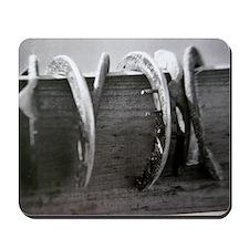 Horse Shoe Mousepad