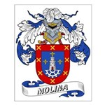 Molina Family Crest Small Poster