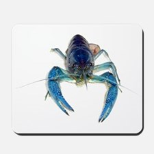 Blue Crayfish Mousepad