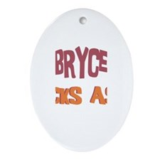 Bryce Kicks Ass Oval Ornament