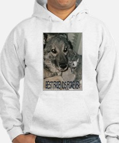 """Best Friends Forever"" Jumper Hoody"