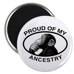 """Proud of my Ancestry Chimp 2.25"""" Magnet (100"""