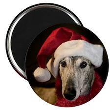 Santa Greyhound Magnet