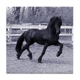 Friesian horse Drink Coasters