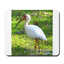 White Ibis Mousepad
