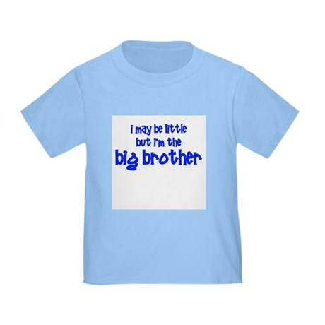 Little Big Brother Toddler T-Shirt