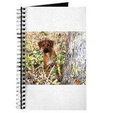 JUBA LEE RIDGEBACK Journal