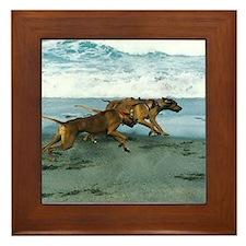 JUBA LEE RIDGEBACK Framed Tile