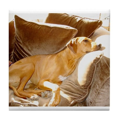 JUBA LEE RIDGEBACK Tile Coaster