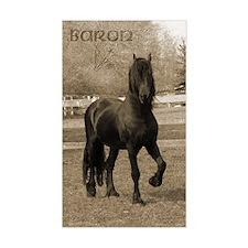 Baron*20 Rectangle Decal