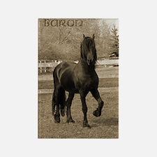 Baron*20 Rectangle Magnet