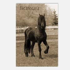 Baron*20 Postcards (Package of 8)