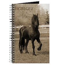 Baron*20 Journal