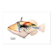 Picasso Trigger Fish Postcards (Package of 8)