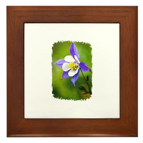 COLUMBINE FLOWER Framed Tile