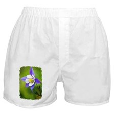 COLUMBINE FLOWER Boxer Shorts